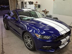 3M Authorized Dealer Automotive Window Films, A Better Tint, window tint installation on Ford Mustang